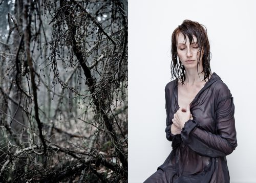New_fot. Dorota Sitnik