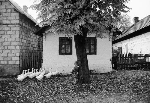 New_Mrzygłód 1988