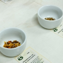 New_Herbata i Fotografia - listopad 2017-8